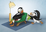Puffins illustration illustracion Frailecillos