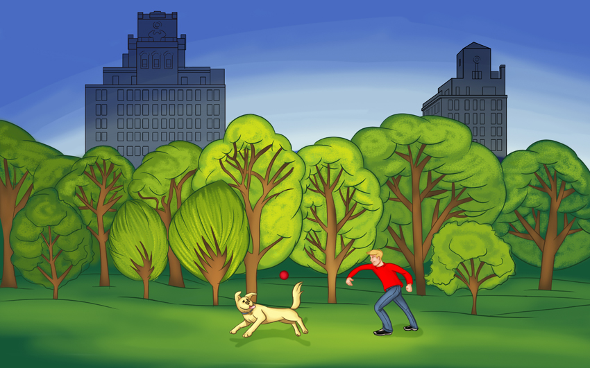 Illustration dog ball park