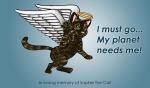 Cat Illustration Angel Gato illustracion