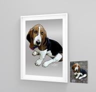 Pet illustration dog