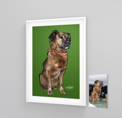 Pet illustration dog